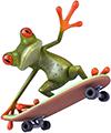 Frog skateboarder
