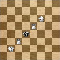 Desafio de xadrez №181478