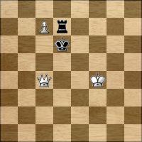 Desafio de xadrez №232216