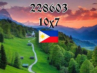 O quebra-cabeça №228603