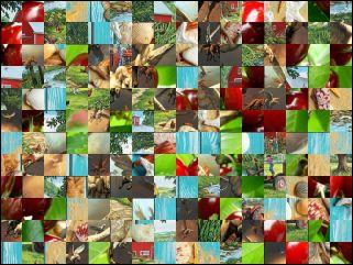 Multi-quebra-cabeça №204559