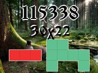 O quebra-cabeça полимино №115338