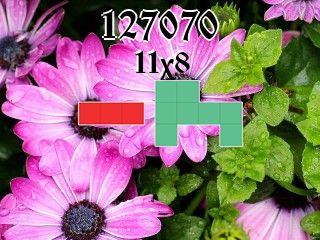 O quebra-cabeça полимино №127070