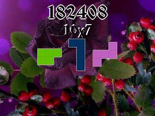 O quebra-cabeça полимино №182408