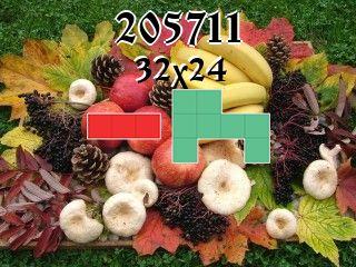 O quebra-cabeça полимино №205711
