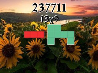 O quebra-cabeça полимино №237711