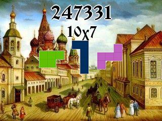 O quebra-cabeça полимино №247331