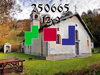 O quebra-cabeça полимино №250665