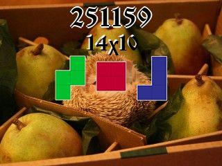 O quebra-cabeça полимино №251159