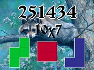 O quebra-cabeça полимино №251434