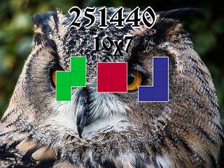 O quebra-cabeça полимино №251440
