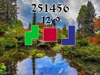 O quebra-cabeça полимино №251456