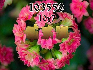 O quebra-cabeça №103550