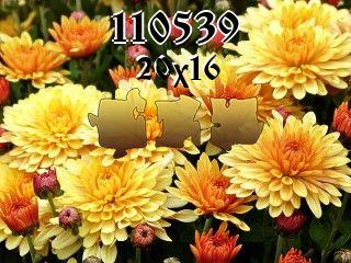O quebra-cabeça №110539