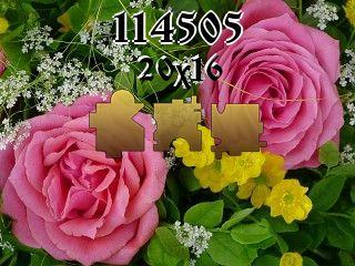 O quebra-cabeça №114505