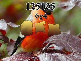 O quebra-cabeça №125105