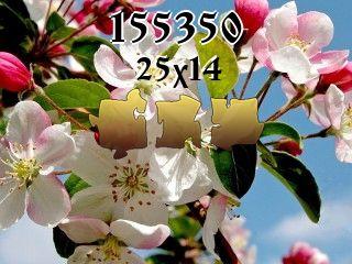 O quebra-cabeça №155350