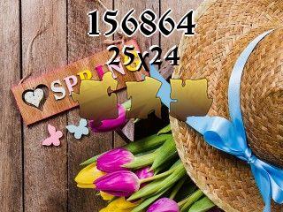 O quebra-cabeça №156864