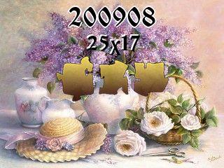 O quebra-cabeça №200908