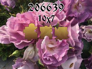 O quebra-cabeça №206639