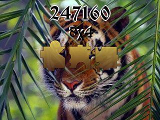 O quebra-cabeça №247160