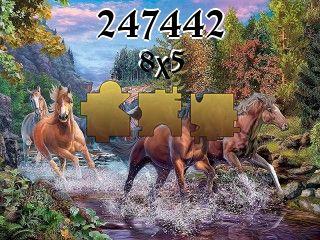 O quebra-cabeça №247442