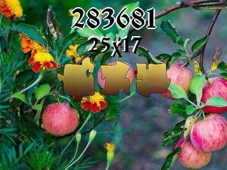 O quebra-cabeça №283681