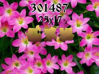O quebra-cabeça №301487