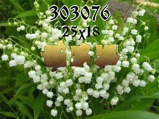 O quebra-cabeça №303076