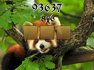 O quebra-cabeça №93637