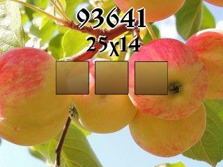 O quebra-cabeça №93641