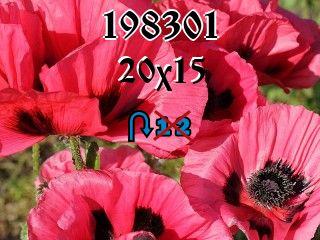 O quebra-cabeça перевертыш №198301