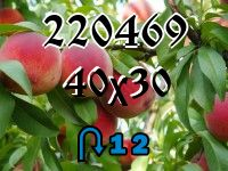 O quebra-cabeça перевертыш №220469