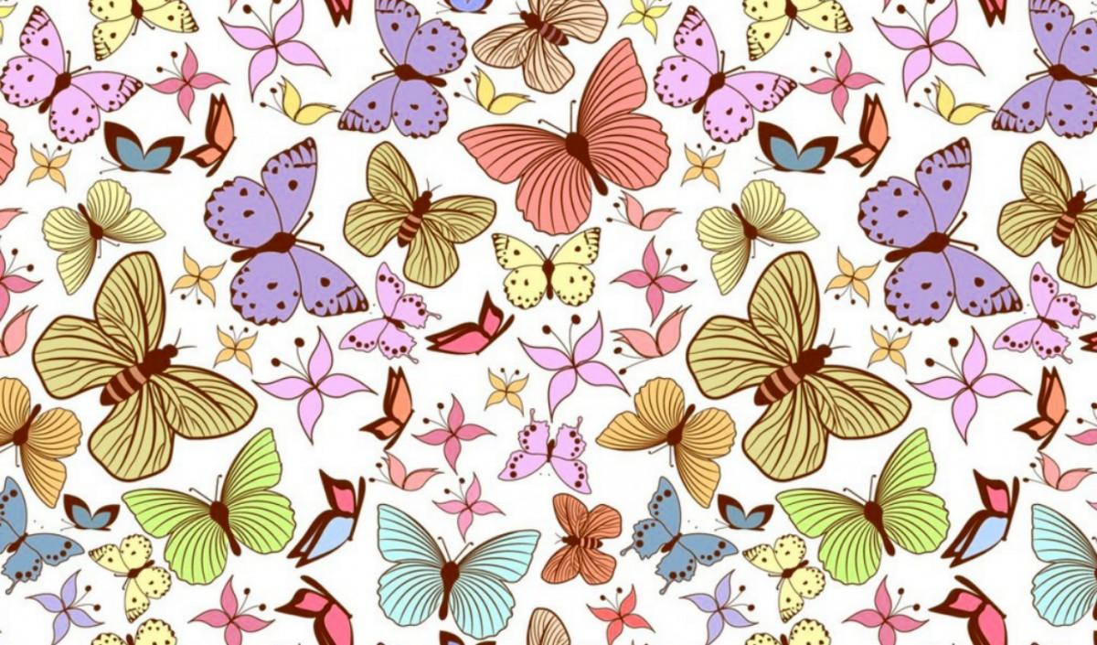 O quebra-cabeça Recolher o quebra-cabeças on-line - Butterfly
