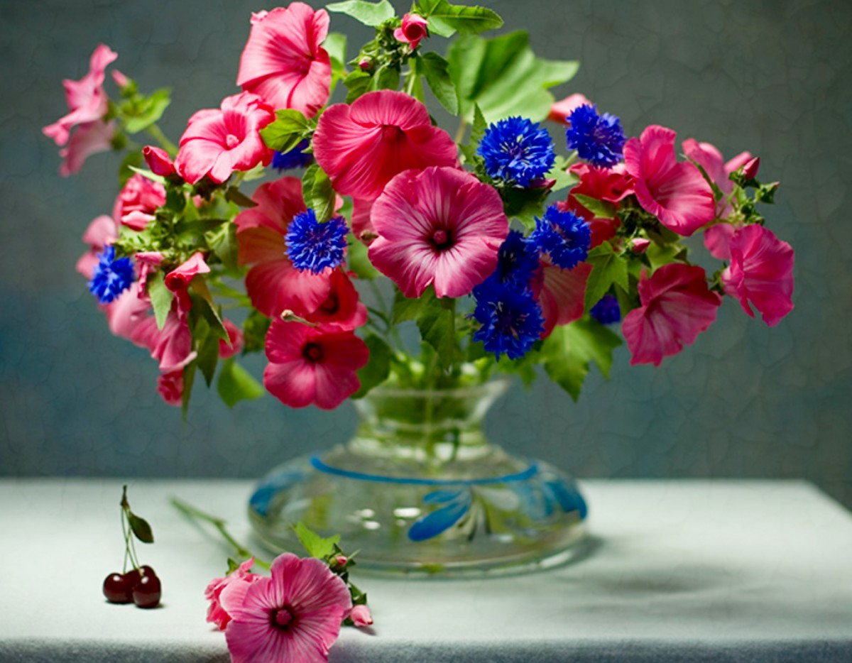 O quebra-cabeça Recolher o quebra-cabeças on-line - Lavatera and cornflowers