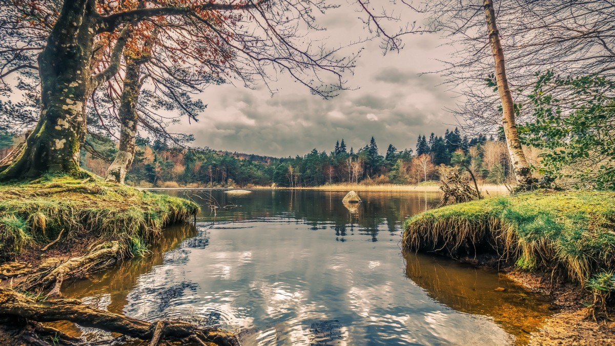 O quebra-cabeça Recolher o quebra-cabeças on-line - Lake of the woods