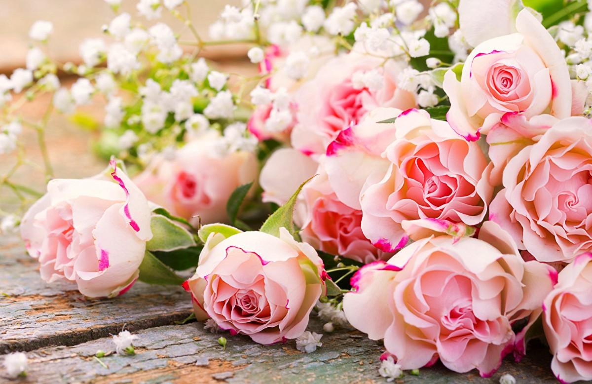 O quebra-cabeça Recolher o quebra-cabeças on-line - Roses and gypsophila