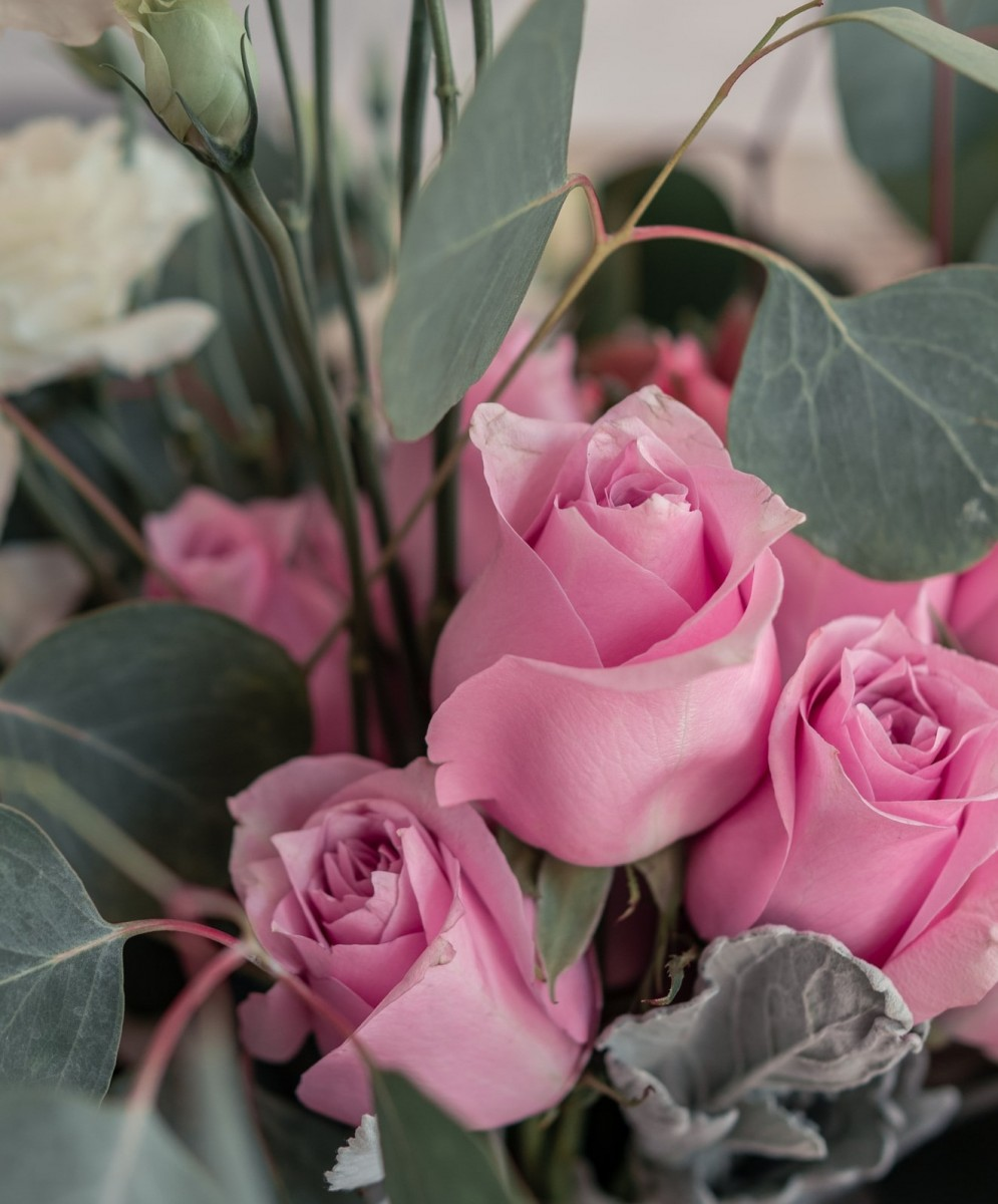 O quebra-cabeça Recolher o quebra-cabeças on-line - Roses and leaves