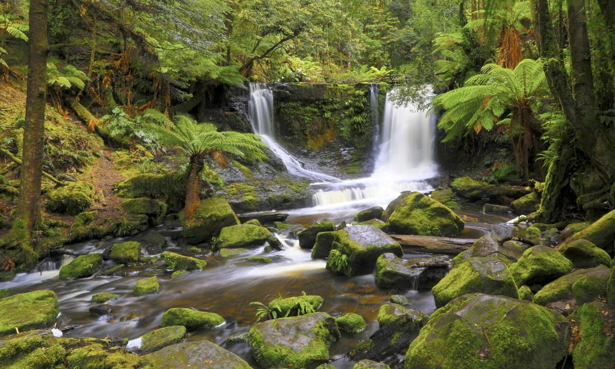 O quebra-cabeça Recolher o quebra-cabeças on-line - Tasmanian waterfall