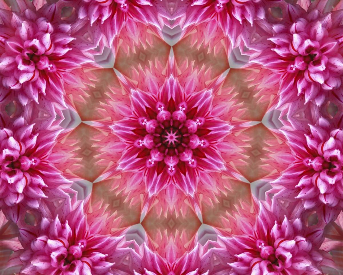 O quebra-cabeça Recolher o quebra-cabeças on-line - In pink color