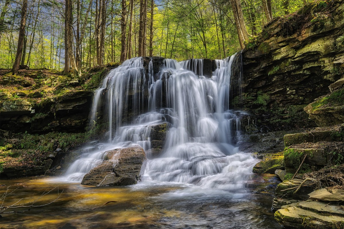 O quebra-cabeça Recolher o quebra-cabeças on-line - Waterfall in the forest