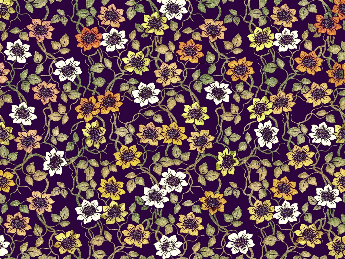 O quebra-cabeça Recolher o quebra-cabeças on-line - Yellow and white flowers