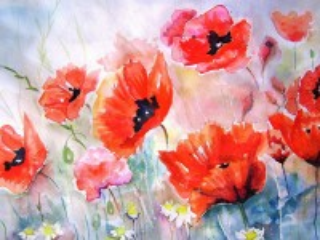 Собирать пазл Watercolor poppies онлайн