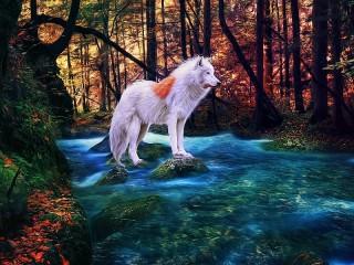 Собирать пазл White Wolf онлайн