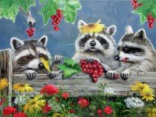 Собирать пазл Raccoons онлайн