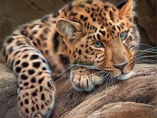 Собирать пазл Sad leopard онлайн