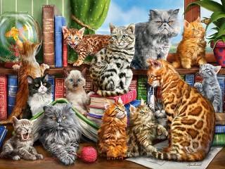 Собирать пазл Cat club онлайн
