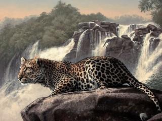 Собирать пазл Leopard at waterfall онлайн