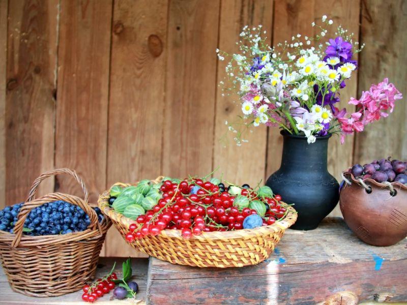 O quebra-cabeça Recolher o quebra-cabeças on-line - Summer berries