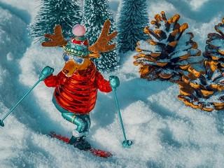 Собирать пазл Skier онлайн